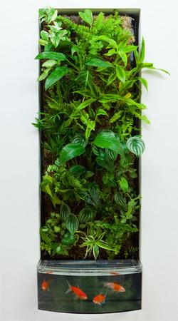 Plantswall01