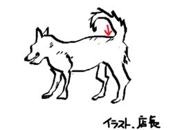 Koume1_2