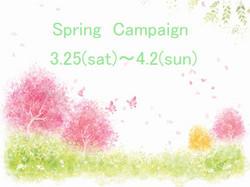 Springback004_11